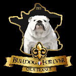 Bulldog Forever Club France